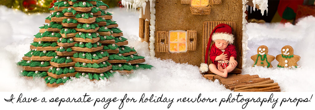 Holiday Props Home Page Banner